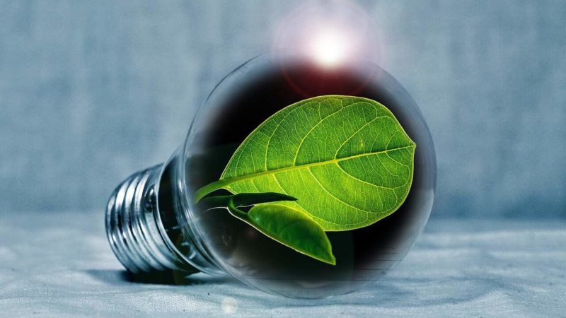 Erneuerbare Energien Quotenregelung