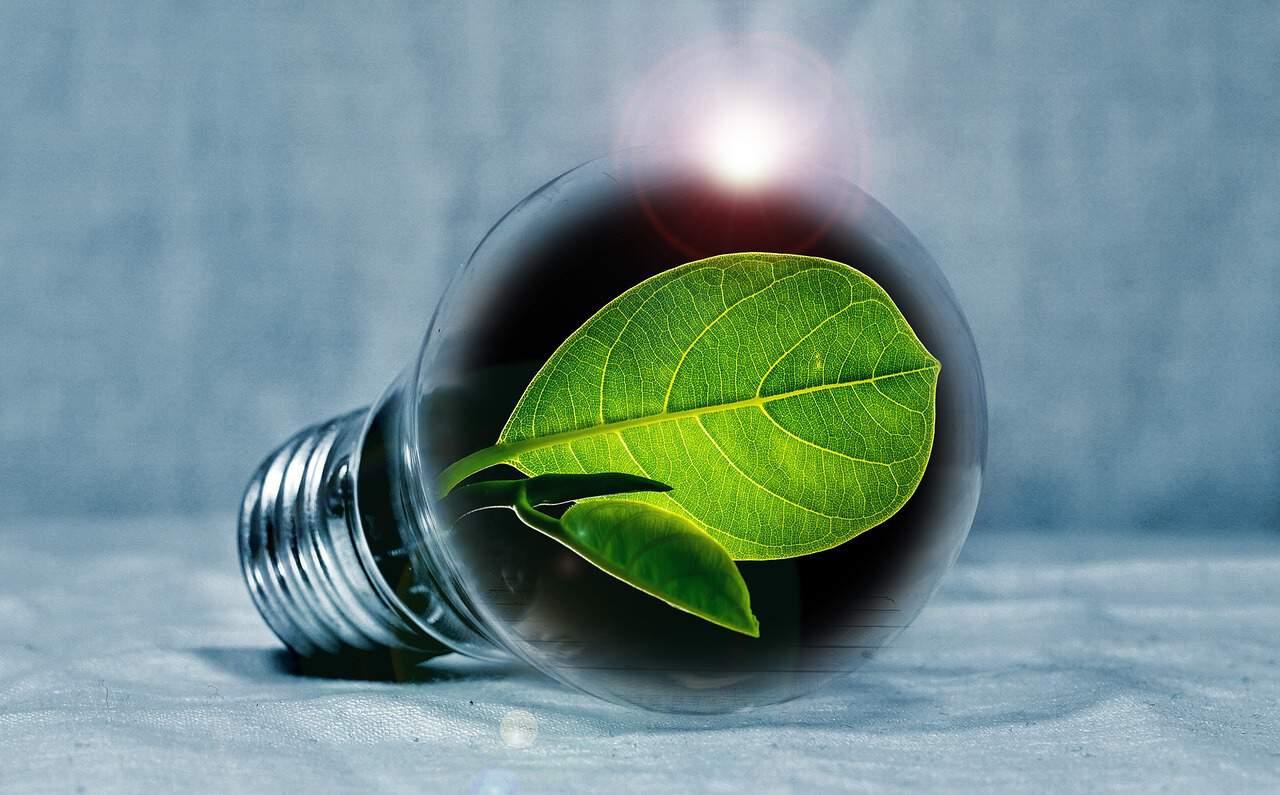 Erneuerbare Energien verstehen: Was sie und deren Quotenregelung sind